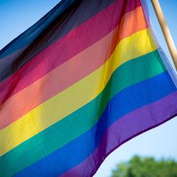 Virtual Pride For All